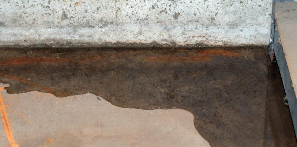 Hoe een vochtige vloer behandelen?